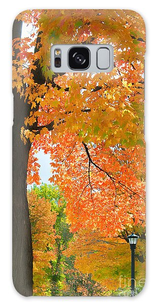 Sunny Fall Day By David Lawrence Galaxy Case