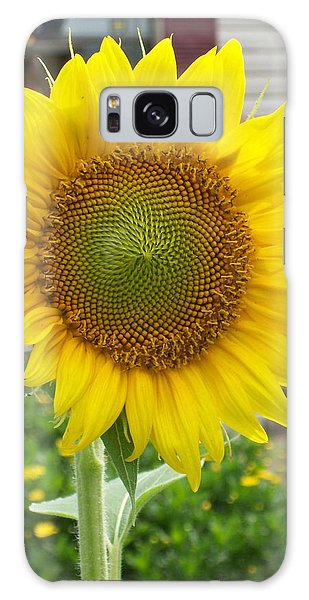 Bright Sunflower Happiness Galaxy Case by Belinda Lee