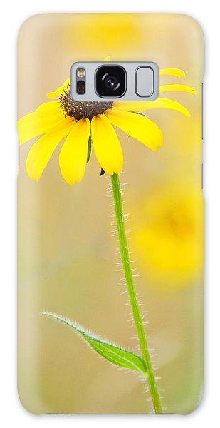 Sunny Galaxy Case