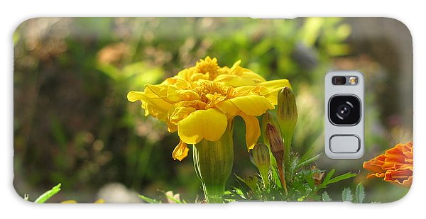 Sunny Marigold Galaxy Case