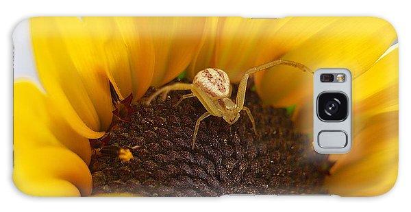 Sunny The Spider Galaxy Case