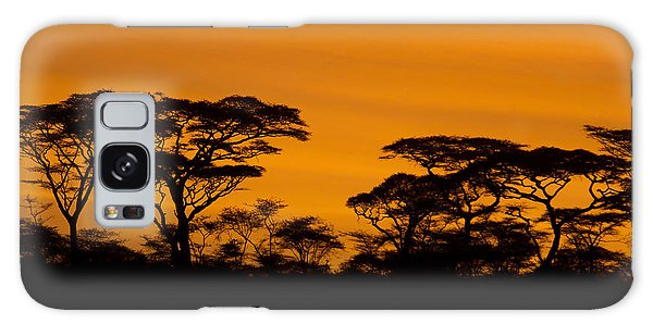 Sunrise Acacias  Galaxy Case