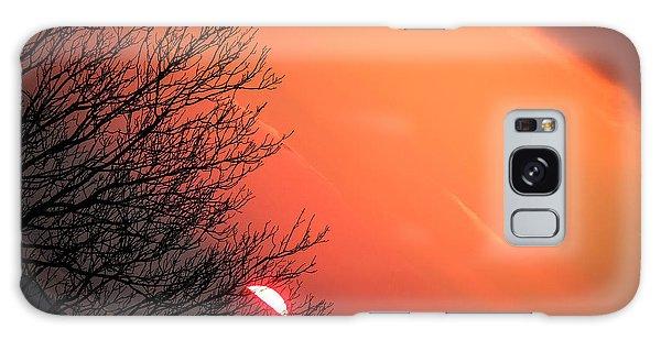 Sunrise And Hibernating Tree Galaxy Case