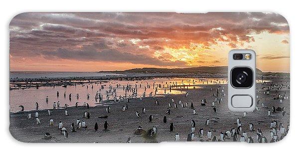 Sand Galaxy Case - Sunrise At Sea Lion by Joan Gil Raga