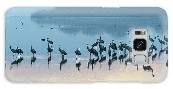 Sunrise Over The Hula Valley Israel 5 Galaxy Case