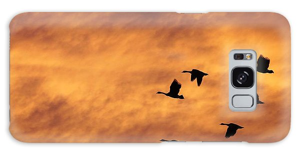 Sunrise Flight 2 Galaxy Case by Diane Alexander