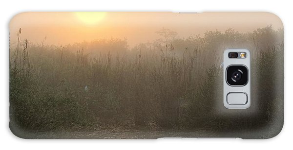 Sunrise In The Everglades Galaxy Case
