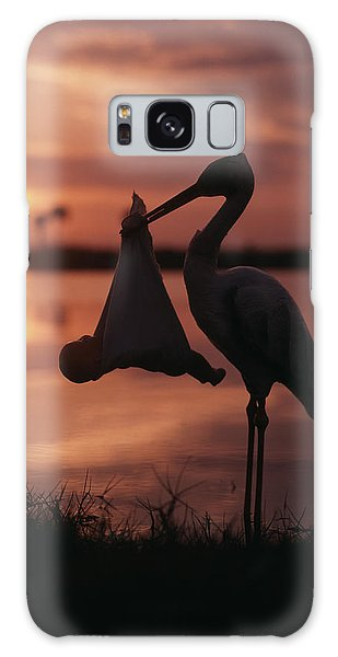 Sunrise Silhouette Of Stork Carrying Galaxy S8 Case
