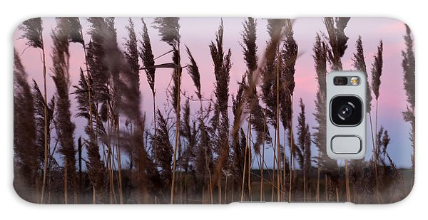 Sunrise Through The Marsh Grass Galaxy Case
