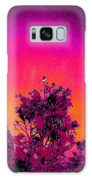 Sunrise To Sunset Nature Is Beautiful Galaxy Case by David Mckinney