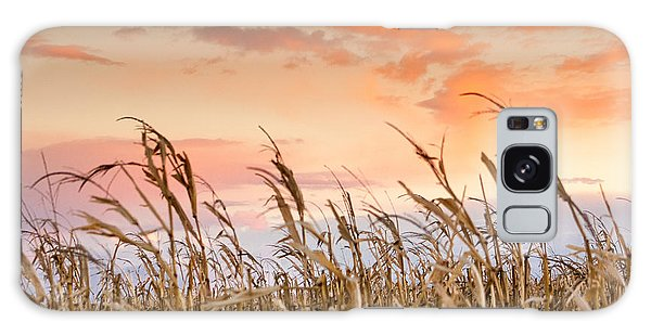 Sunset Against The Cornstalks Galaxy Case