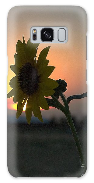 Galaxy Case featuring the photograph Sunset And Sunflower by Mae Wertz