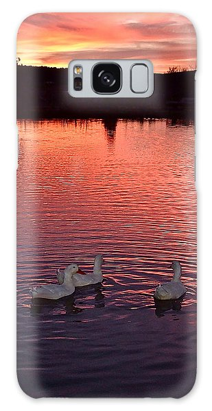 Sunset At Duckpond Galaxy Case