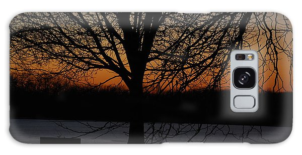 Sunset At The Park Galaxy Case
