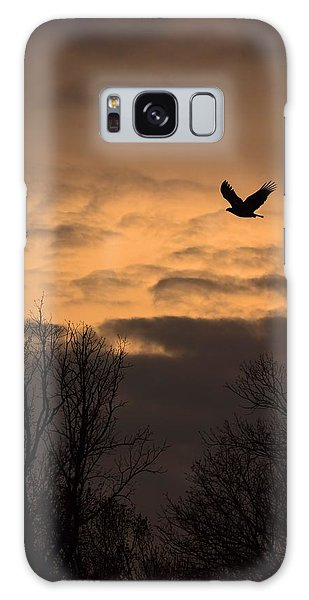 Sunset Eagle Galaxy Case