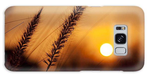 Sunset Fountain Grass Galaxy Case