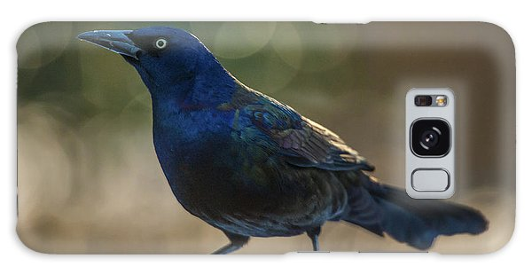 Sunset Grackle Galaxy Case by Jim Moore