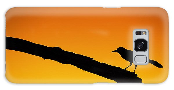 Sunset Grackle Silhouette Galaxy Case