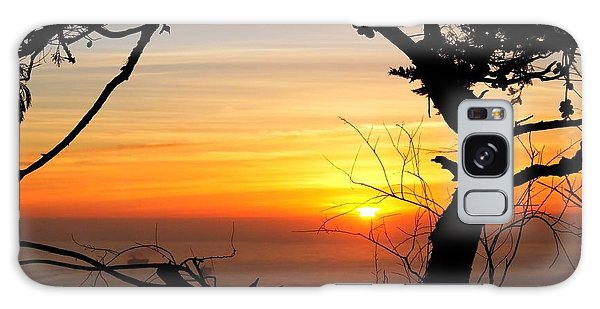 Sunset In A Tree Frame Galaxy Case