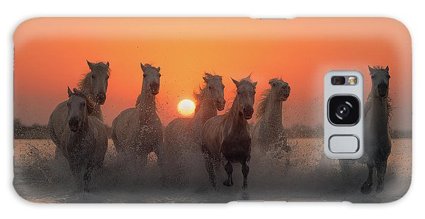 Race Galaxy Case - Sunset In Camargue by Rostovskiy Anton