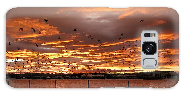 Sunset In Tauranga New Zealand Galaxy Case by Jola Martysz