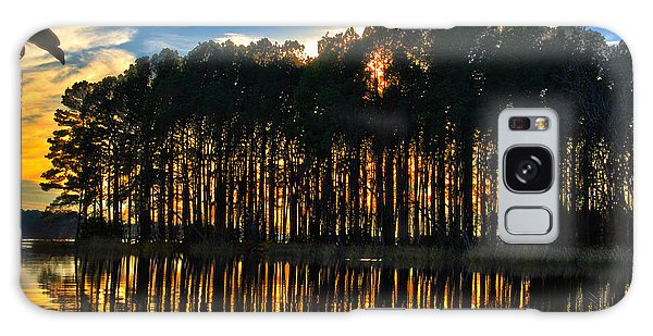 Galaxy Case - Sunset In The Park by Frank Savarese