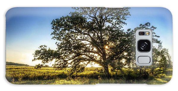 Branch Galaxy Case - Sunset Oak by Scott Norris