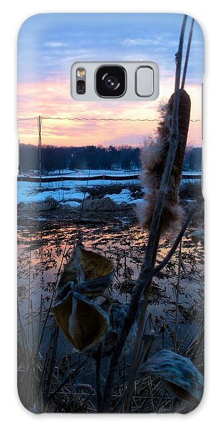 Sunset On The Pond Galaxy Case