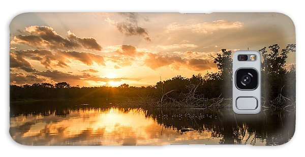 Sunset Over Eco Pond Galaxy Case by Doug McPherson