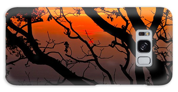 Sunset Silhouette Galaxy Case by John Roberts