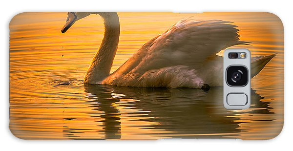 Sunset Swan Galaxy Case