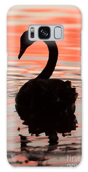 Sunset Swan Galaxy Case
