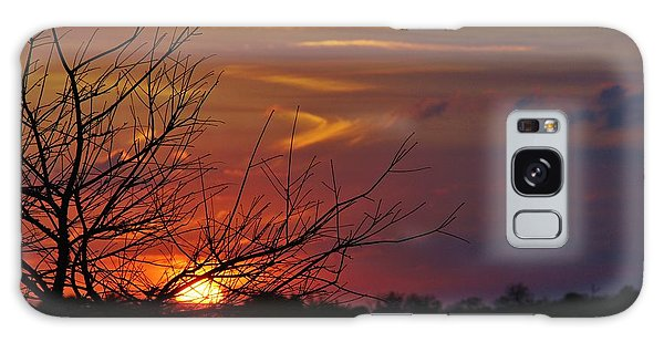 Sunset Through The Branches Galaxy Case