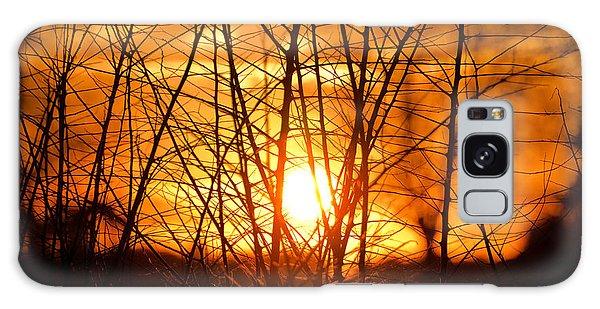 Sunset Through The Brush Galaxy Case