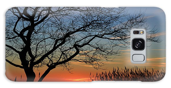 Sunset Tree In Ocean City Md Galaxy Case by Bill Swartwout