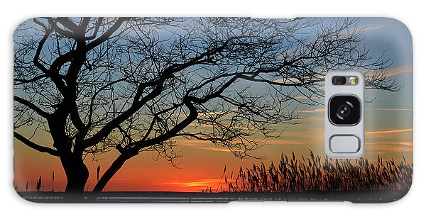Sunset Tree In Ocean City Md Galaxy Case