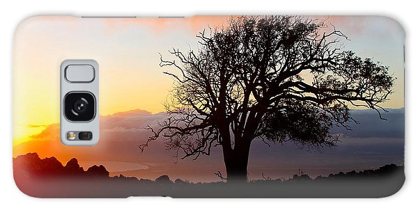 Sunset Tree In Maui Galaxy Case