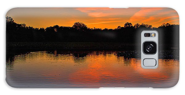Sunset With Swan Galaxy Case by Steven Richman