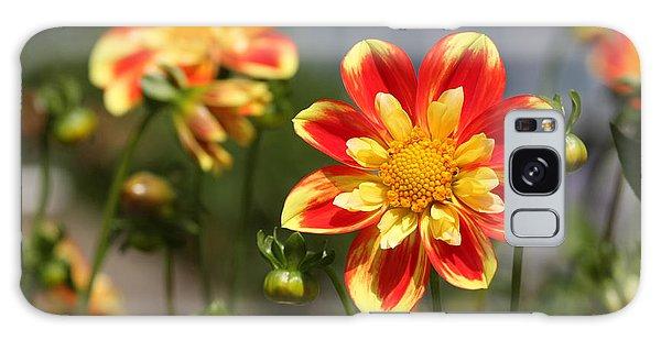 Sunshine Flower Galaxy Case