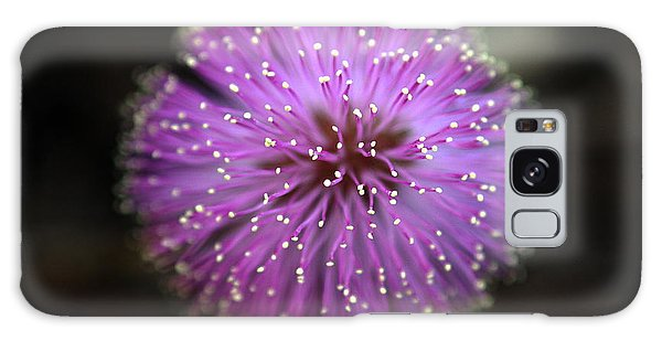 Sunshine Mimosa Galaxy Case by Greg Allore