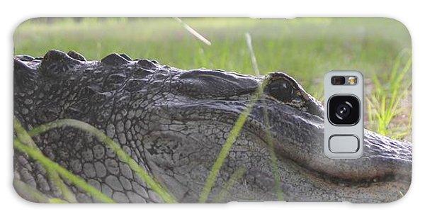 Surprise Alligator House Guest  2 Galaxy Case