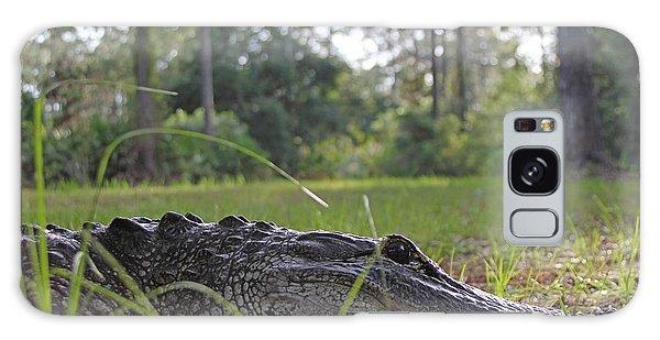 Surprise Alligator Houseguest Galaxy Case