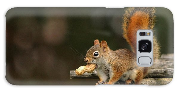 Surprised Red Squirrel With Nut Portrait Galaxy Case