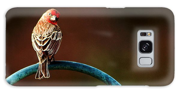 Surreal Purple Finch Galaxy Case
