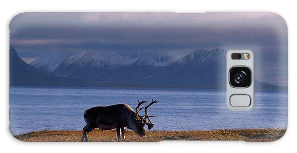 Islands In The Sky Galaxy Case - Svalbard Reindeer Grazing Near The Sea by Norbert Rosing