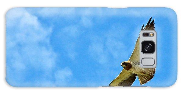 Swainson's Hawk Snake River Birds Of Prey Natural Conservation Area Galaxy Case