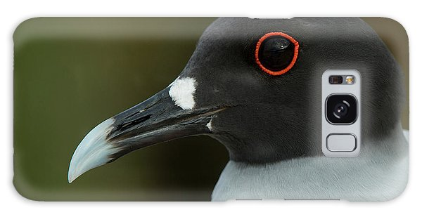 Swallow-tailed Gull (larus Furcatus Galaxy Case