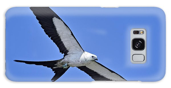 Swallow-tailed Kite Galaxy Case