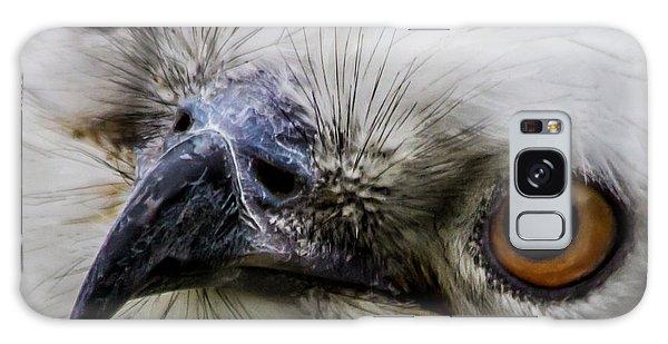 Swallow Tailed Kite Galaxy Case