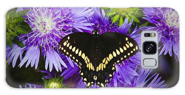 Swallowtail And Astor Galaxy Case by Debra Crank